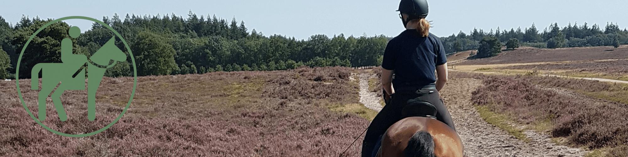 Header Horse